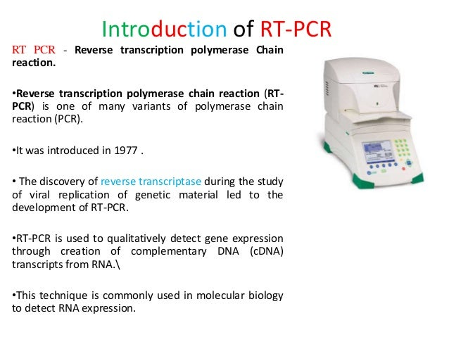 introduction of rt pcr