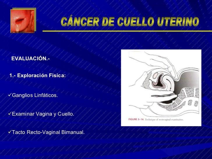 <ul><li>Ganglios Linfáticos. </li></ul><ul><li>Examinar Vagina y Cuello. </li></ul><ul><li>Tacto Recto-Vaginal Bimanual. <...