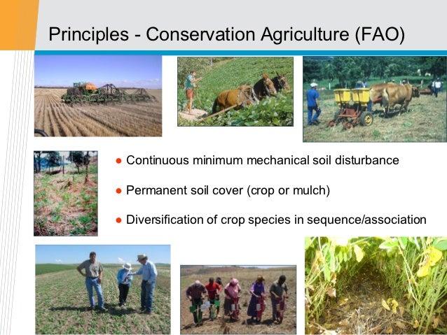 Principles - Conservation Agriculture (FAO)        ● Continuous minimum mechanical soil disturbance        ● Permanent soi...