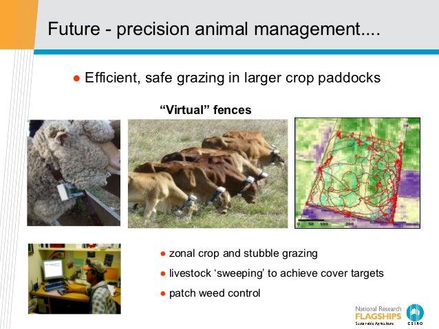 "Future - precision animal management....  ● Efficient, safe grazing in larger crop paddocks               ""Virtual"" fences..."