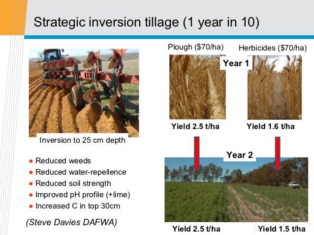 Strategic inversion tillage (1 year in 10)                                Plough ($70/ha)      Herbicides ($70/ha)        ...