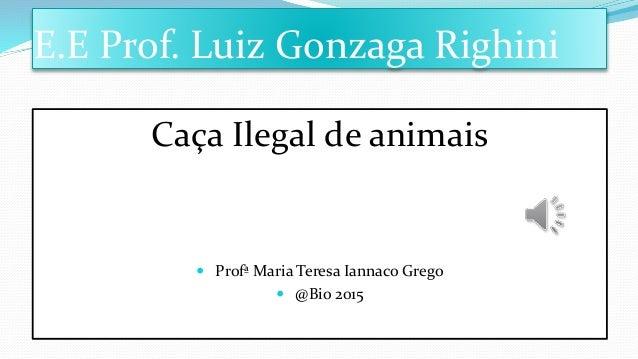 E.E Prof. Luiz Gonzaga Righini Caça Ilegal de animais  Profª Maria Teresa Iannaco Grego  @Bio 2015