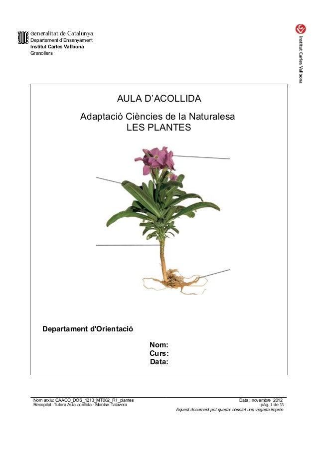 Generalitat de Catalunya Departament d'Ensenyament Institut Carles Vallbona Granollers AULA D'ACOLLIDA Adaptació Ciències ...