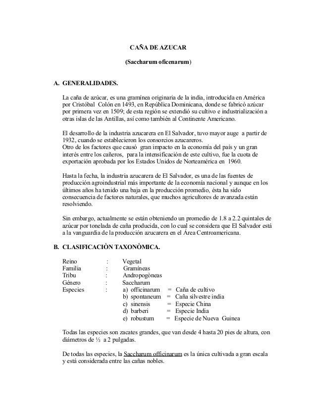 CAÑA DE AZUCAR (Saccharum oficenarum) A. GENERALIDADES. La caña de azúcar, es una gramínea originaria de la india, introdu...