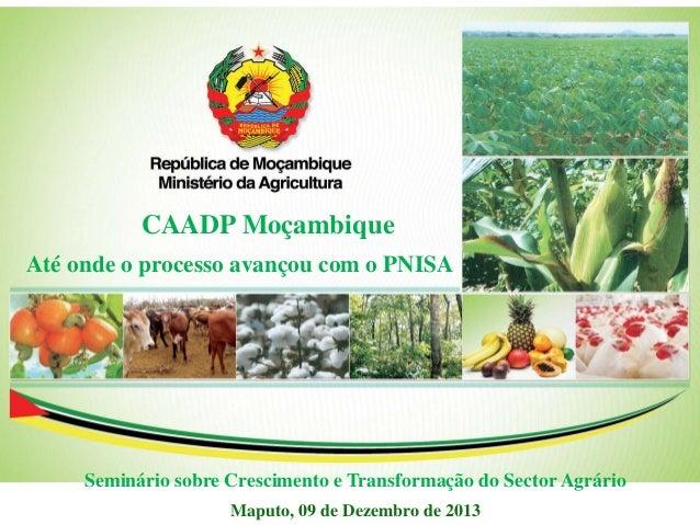 Até onde o processo avançou com o PNISA Maputo, 09 de Dezembro de 2013 CAADP Moçambique Seminário sobre Crescimento e Tran...