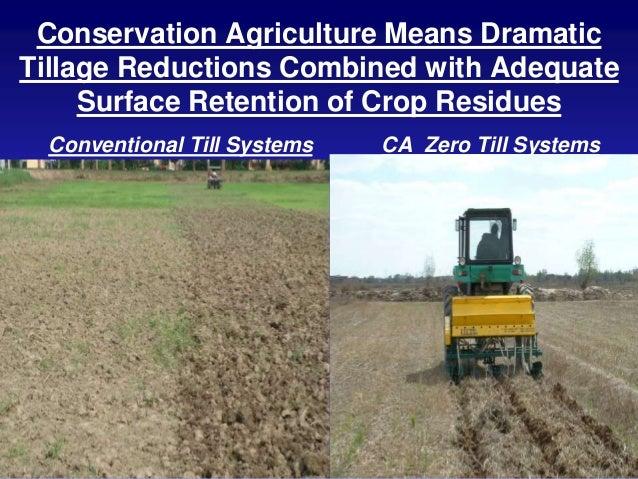 Conservation Agriculture In Semi Arid Tropics