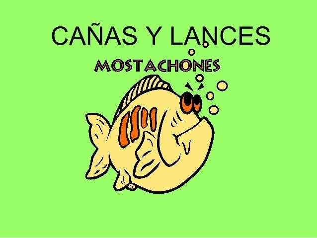 CAÑAS Y LANCES