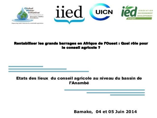 Rentabiliser les grands barrages en Afrique de l'Ouest : Quel rôle pour  le conseil agricole ?  Etats des lieux du conseil...