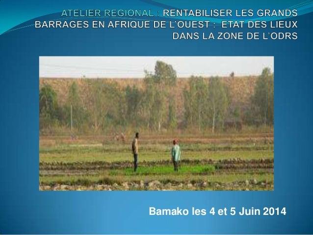 Bamako les 4 et 5 Juin 2014