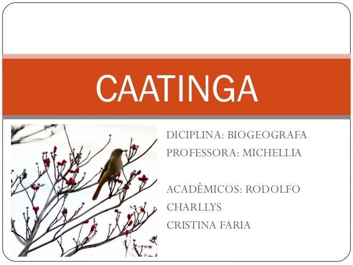 CAATINGA   DICIPLINA: BIOGEOGRAFA   PROFESSORA: MICHELLIA   ACADÊMICOS: RODOLFO   CHARLLYS   CRISTINA FARIA