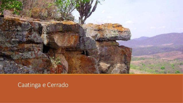 Caatinga e Cerrado