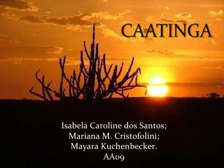 Isabela Caroline dos Santos; Mariana M. Cristofolini; Mayara Kuchenbecker. AA09