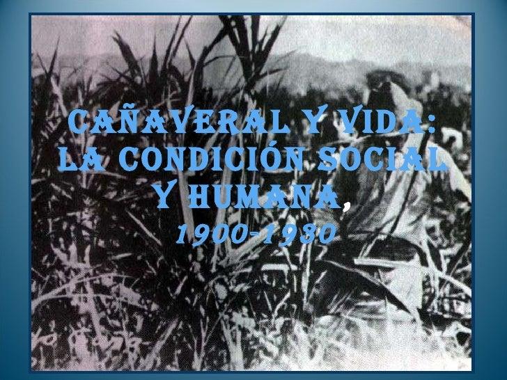 Cañaveral y vida: la condición social y humana , 1900-1930