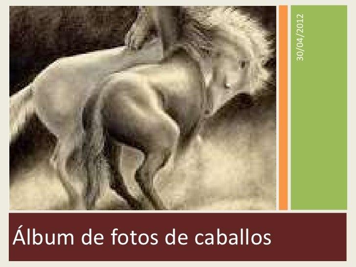 30/04/2012Álbum de fotos de caballos
