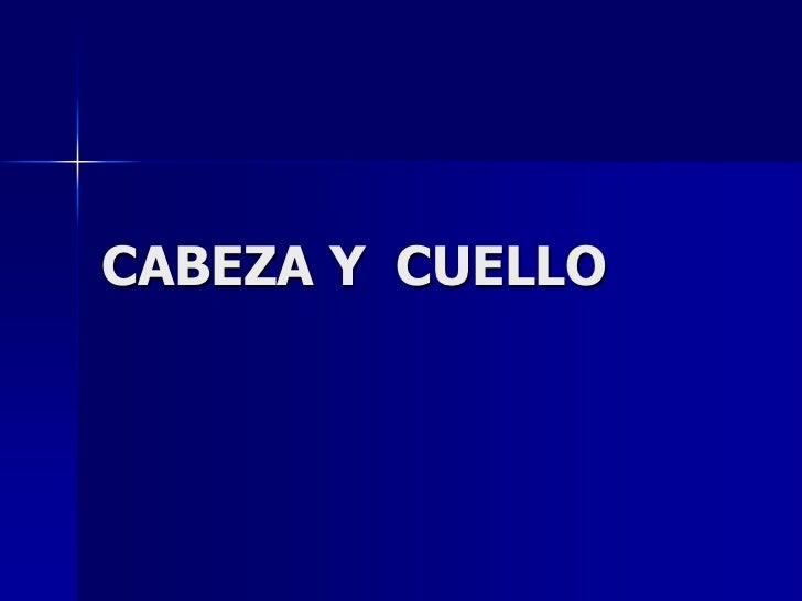 CABEZA Y  CUELLO<br />