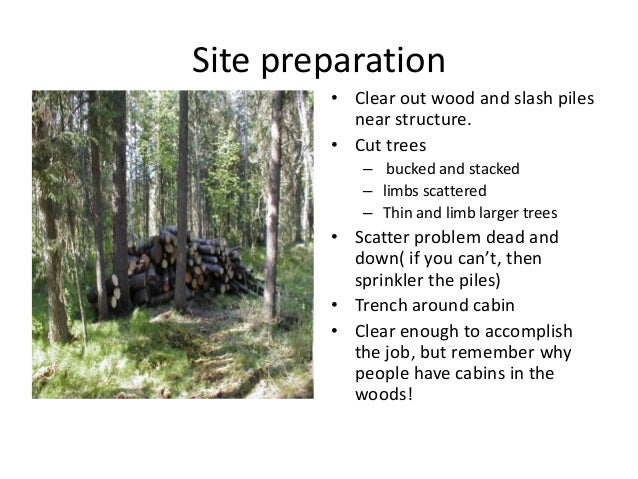 Cabin Point Protection in Alaska