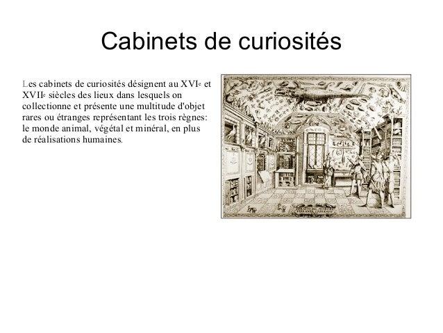Cabinets de curiosit s selma linda - Cabinet de curiosite forum ...
