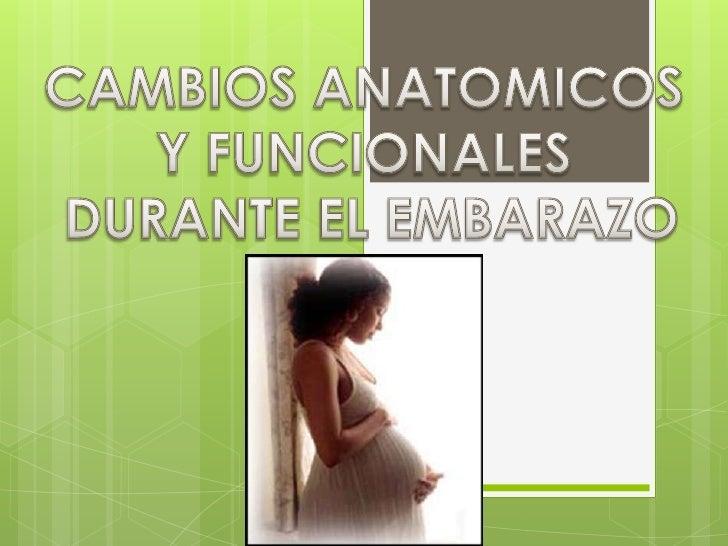 CAMBIOS ANATOMICOS <br />Y FUNCIONALES<br /> DURANTE EL EMBARAZO<br />