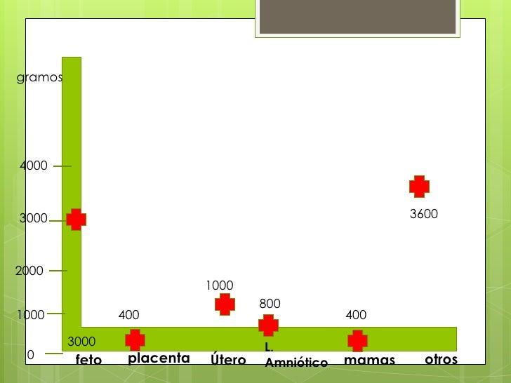 gramos<br />4000<br />3600<br />3000<br />2000<br />1000<br />800<br />400<br />1000<br />400<br />3000<br />L. Amniótico<...