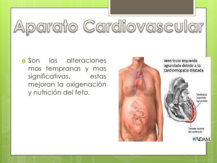Aparato Cardiovascular<br />Son las alteraciones mas tempranas y mas significativas, estas mejoran la oxigenación y nutric...