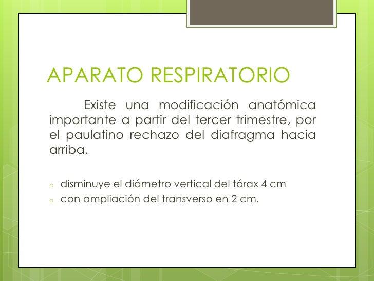 APARATO RESPIRATORIO<br /> Existe una modificación anatómica importante a partir del tercer trimestre, por el paulatino r...
