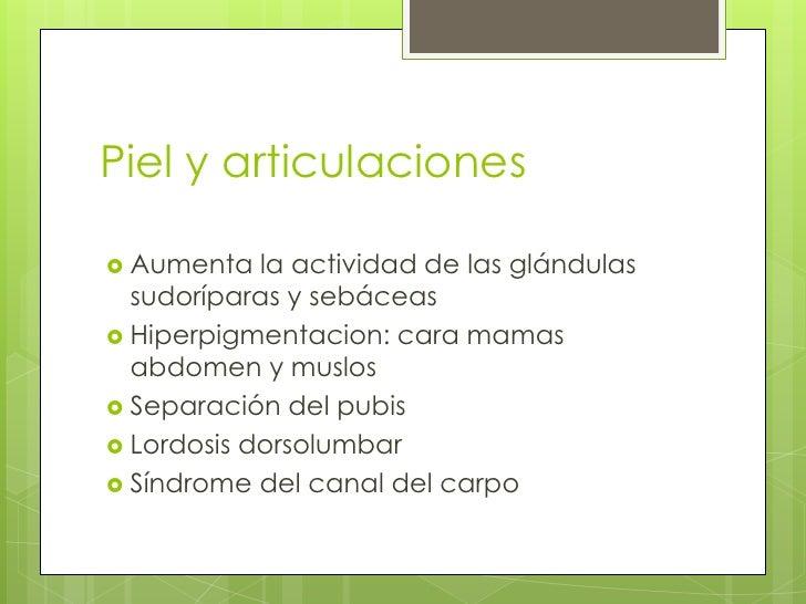Piel y articulaciones<br />Aumenta la actividad de las glándulas sudoríparas y sebáceas<br />Hiperpigmentacion: cara mamas...