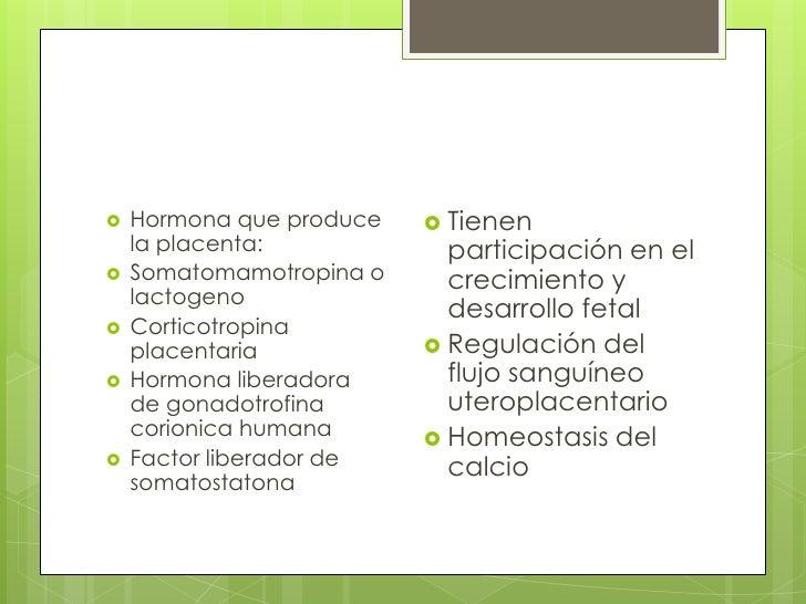 Hormona que produce la placenta:<br />Somatomamotropina o lactogeno<br />Corticotropina placentaria<br />Hormona liberador...