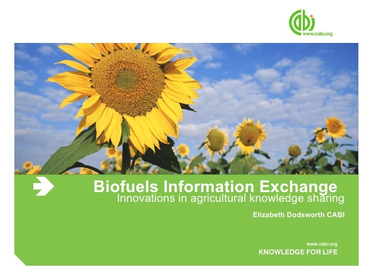 Biofuels Information Exchange Innovations in agricultural knowledge sharing Elizabeth Dodsworth CABI