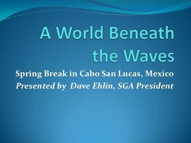 A World Beneath the Waves<br />Spring Break in Cabo San Lucas, Mexico<br />Presented by  Dave Ehlin, SGA President<br />