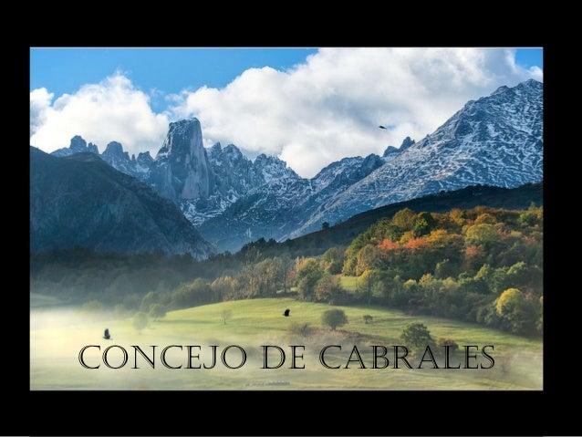 CONCEJO DE CABRALES