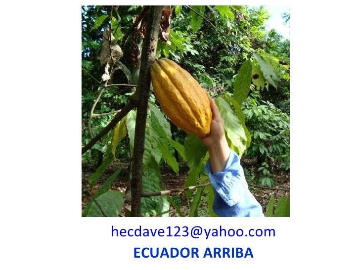 [email_address] ECUADOR ARRIBA