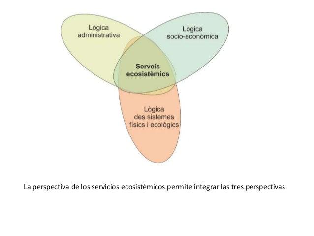 Ecosistemas construidos Slide 3