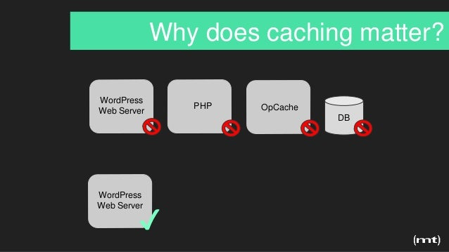 Why does caching matter? DB WordPress Web Server OpCachePHP WordPress Web Server ✔