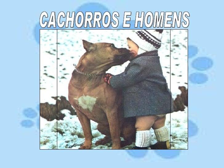 CACHORROS E HOMENS