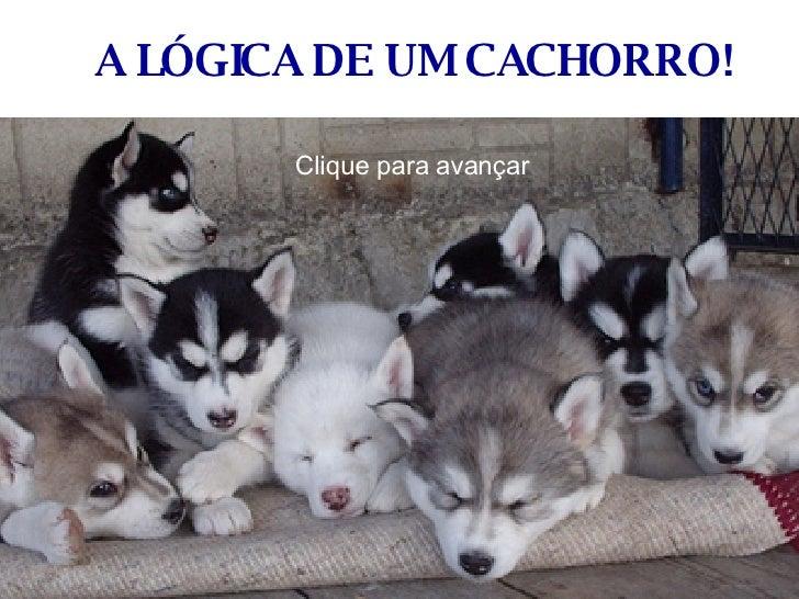 A LÓGICA DE UM CACHORRO!  Clique para avançar