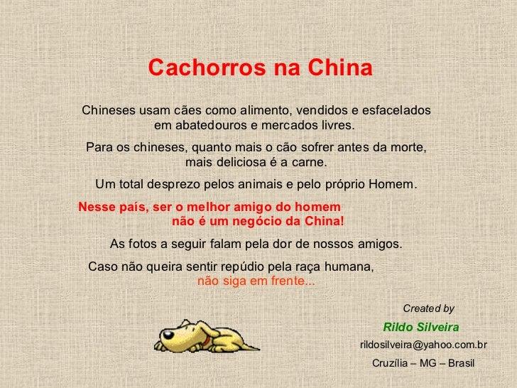 Cachorros na China Chineses usam cães como alimento, vendidos e esfacelados em abatedouros e mercados livres.  Para os chi...