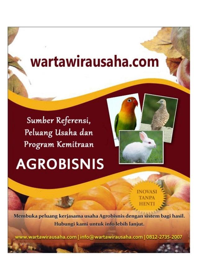 TTG BUDIDAYA PETERNAKAN  BUDIDAYA CACING TANAH ( Lumbricus sp.)  1.  SEJARAH SINGKAT Cacing tanah termasuk hewan tingkat r...