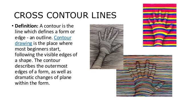 Cross Contour Line Drawing Definition : Cacti