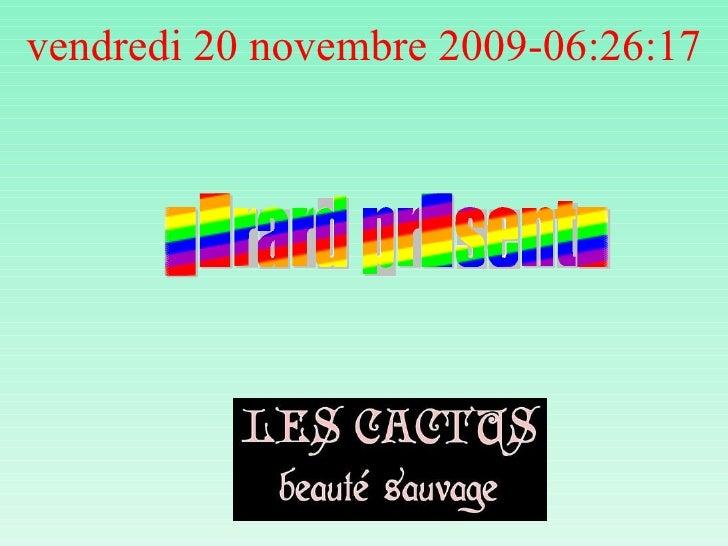 vendredi 20 novembre 2009 - 06:26:01