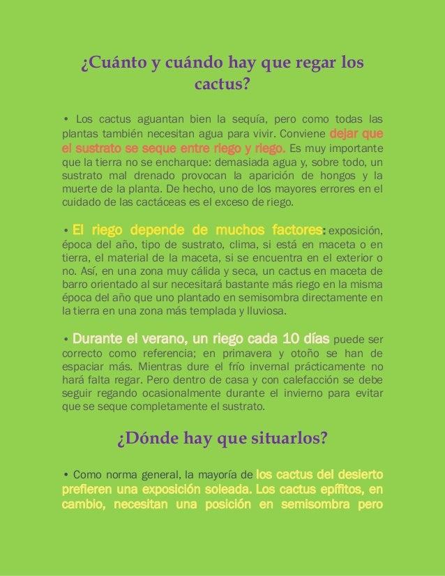 Verdecor cactus for Informacion sobre el cactus