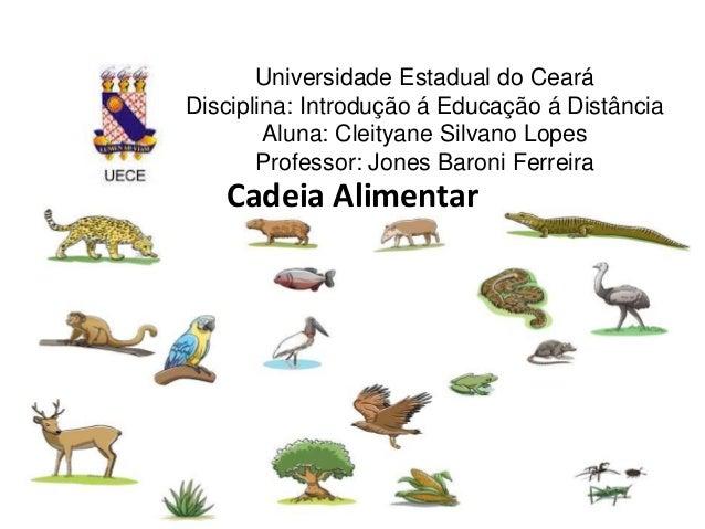Universidade Estadual do Ceará  Disciplina: Introdução á Educação á Distância  Aluna: Cleityane Silvano Lopes  Professor: ...