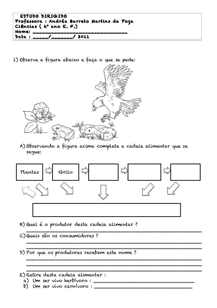 1 ESTUDO DIRIG IDO       Professora : Andréa Barreto M artins da Poça       Ciências ( 6 o ano E. F.)       Nom e: _______...