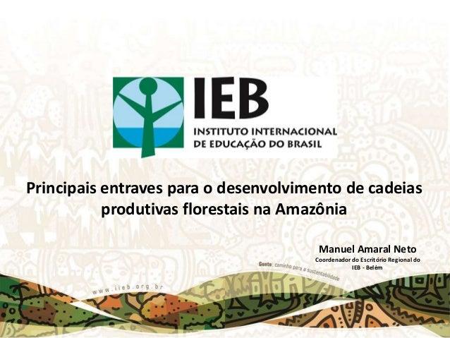 Principais entraves para o desenvolvimento de cadeias produtivas florestais na Amazônia Manuel Amaral Neto Coordenador do ...