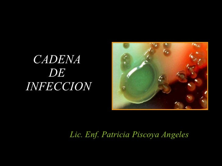 Lic. Enf. Patricia Piscoya Angeles CADENA  DE  INFECCION