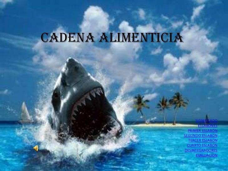 CADENA ALIMENTICIA                           SIGNIFICADO                             ESLABONES                       PRIME...