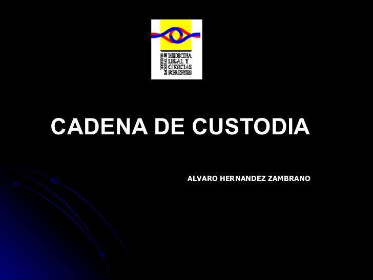 CADENA DE CUSTODIA ALVARO HERNANDEZ ZAMBRANO