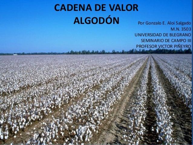 CADENA DE VALOR ALGODÓN Por Gonzalo E. Aloi Salgado M.N. 3503 UNIVERSIDAD DE BLEGRANO SEMINARIO DE CAMPO III PROFESOR VICT...