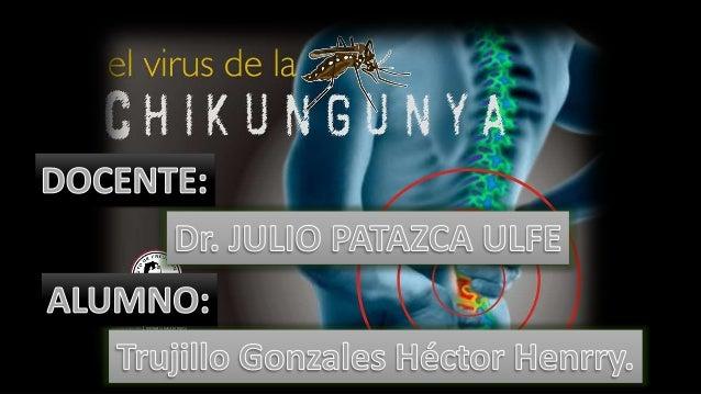 CADENA EPIDEMIOLOGICA VIRUS CHIKUNGUNYA -Virus ARN -Género alfavirus, -Familia Togaviridae.Todos los individuos no infecta...
