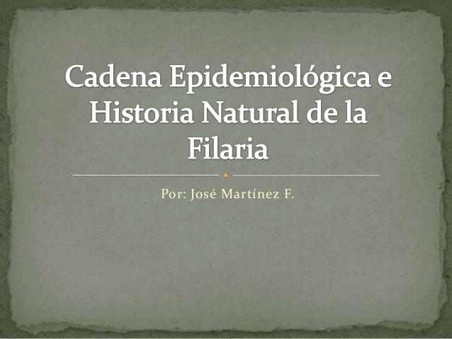 Por: José Martínez F.