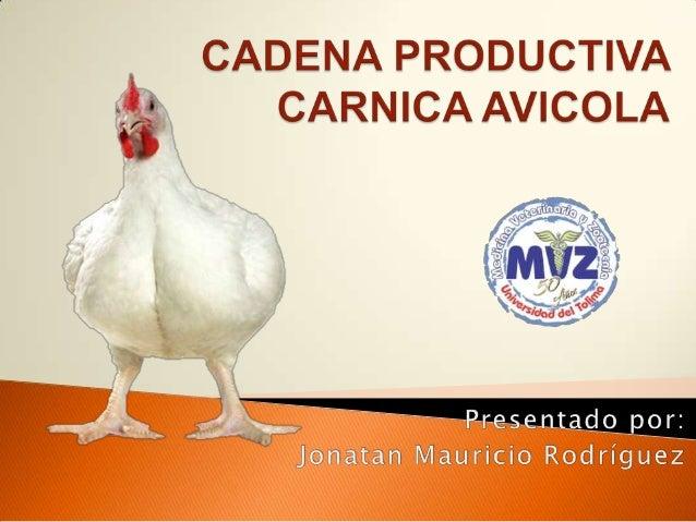  La industria avícola ha cambiado en los últimos 60 años mas que cualquier otro sector de la producción animal, este desa...
